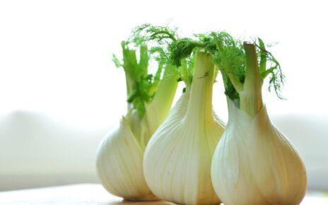 Manfaat Terbaik Sayuran Adas