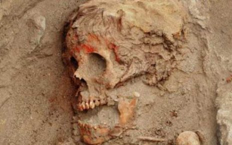 Fosil Manusia Aneh